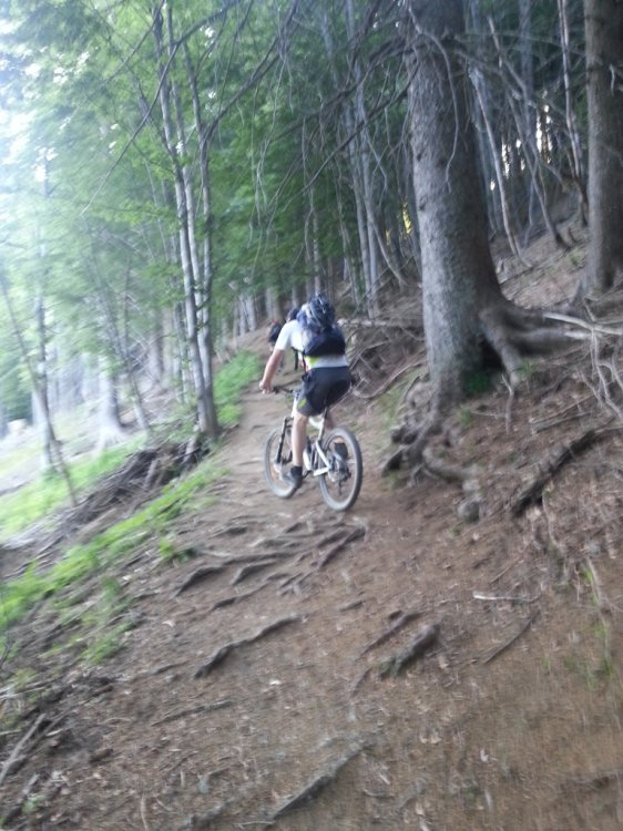 Image result for golica mtb
